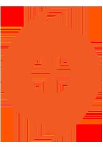 Лого Origin-pro.ru
